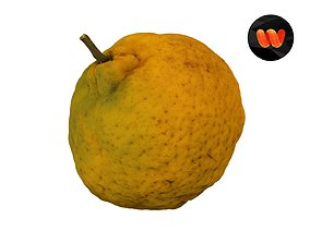 3D model Tangerine - Extreme Definition Scanned