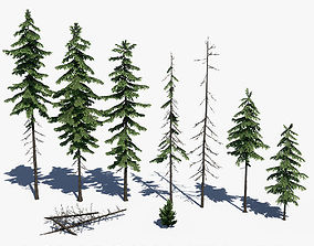 Pine Tree Pack 01 3D model low-poly