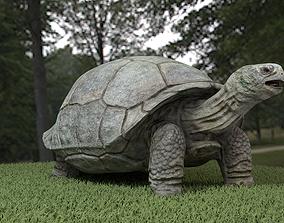 3D asset Galapagos Tortoise