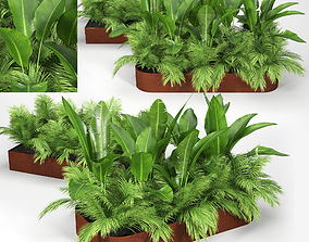 3D Flowerbed Palm small