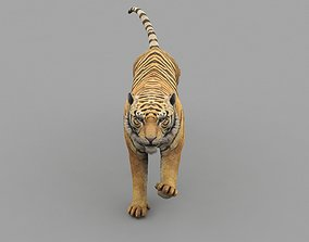 3D model realtime Tiger Animated Game Ready And Vfx