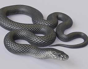 3D asset VR / AR ready Animated Black Mamba
