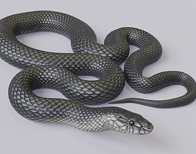 3D asset VR / AR ready Animated Black Mamba