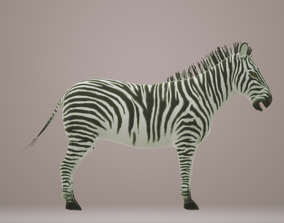 Zebra 3D Animated animated
