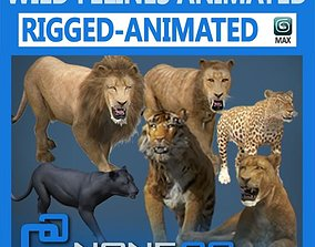 3D Pack - Wild Felines Animated