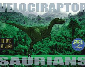 game-ready Velociraptor model