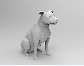 animal Sitting Dog 3D print model