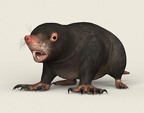 3D model Game Ready Mole