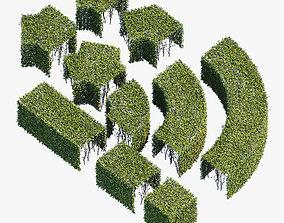 3D Hedge 400x400