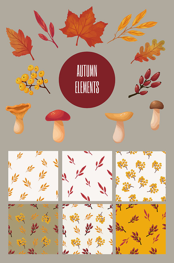 Autumn patterns and elemens textures