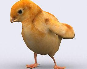 3DRT - Chick animated