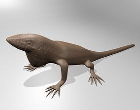 3D print model Anole lizard