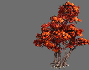 plant Game Model - Forest - Maple Tree 7