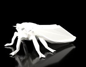 Cicada Low Poligonal 3D model