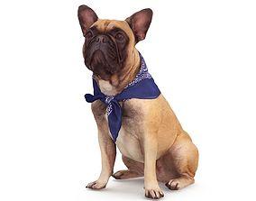 French Bulldog Sitting 3D model