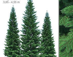 Fir-tree Set 04 3D