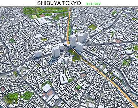 Shibuya Tokyo 10km 3D model