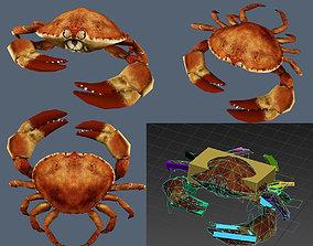 crab lobster 3D