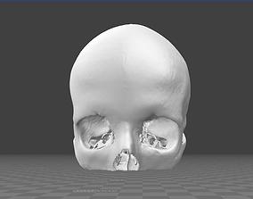 skeleton Human Skull female - age 24 3D model