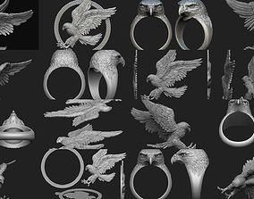 Hawk collection 3D model