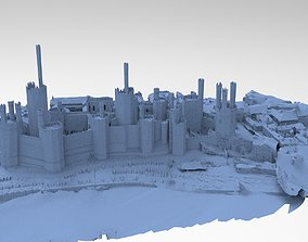 3D Medieval Castle in Town