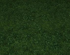 ground grass tile 33 3D model
