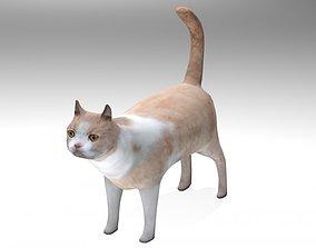 3D model Kitten pet