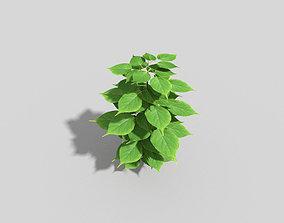 Low poly Plant 3D model VR / AR ready shrub