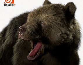 3D Bear Brown 2