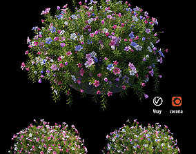 Plant flower set 15 3D model