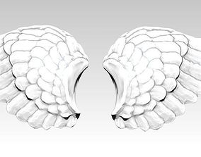 3D printable model Wings pair Detailed