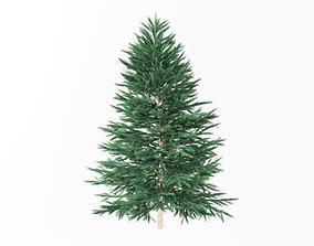 rigged Christmas tree model fir tree