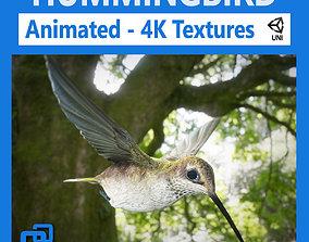 3D model Hummingbird Animated Unity