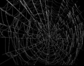 Spiderweb 3D
