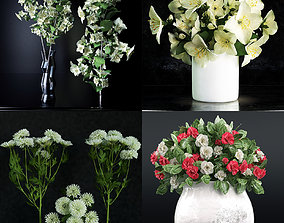 set Flower collection 1 3D