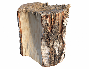 3D model PBR Tree Stump Used For Chopping Wood