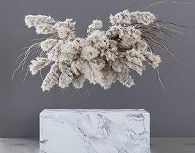 3D model INDOOR DRIED FLOWERS pampas grass