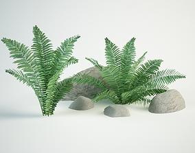 3D model ostrich fern Matteuccia struthiopteris
