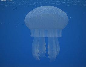 3D model Common Jellyfish Aurelia Aurita