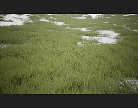 Grass Forest - UE4 Ready 3D model