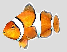 3D model Clownfish Tropical Fish