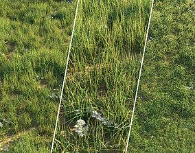 Grass set 1 3D
