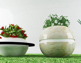 3D asset garden plants