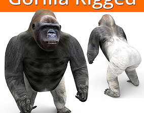 rigged gorilla Rigged 3D Models game ready
