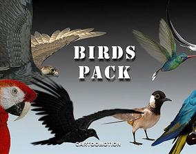 3D model Animated Birds Pack