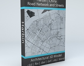 3D Harbin Road Network and Streets