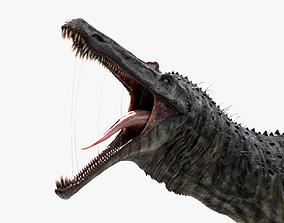 3D asset Suchomimus tenerensis