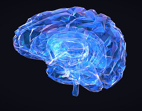 Low Polygon Art Medical Brain Roentgen 3D asset