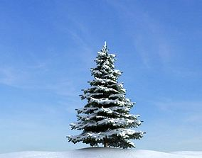 Snow Covered Pine Tree 3D