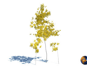 tree yellow leaf realistic forest tree 3d model realtime
